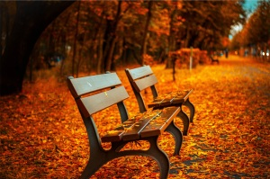 seating in autumn
