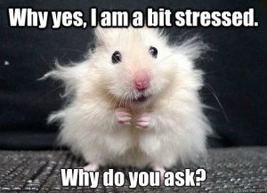mouse-stress